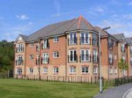 Apartment to rent in Lamberton Drive, Brymbo...