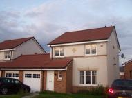 3 bedroom semi detached property to rent in Gillespie Place, Armadale