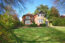3 bedroom Detached house for sale in Lincoln Road...
