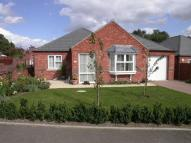 Detached Bungalow for sale in 11 Mill Close...