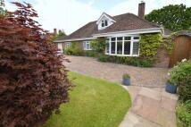 3 bedroom Detached Bungalow for sale in Lavender Cottage...