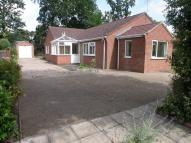 3 bedroom Detached Bungalow for sale in 42 Woodland Drive...