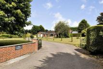 Detached Bungalow for sale in The Gardens...