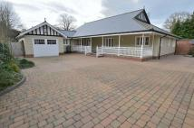 Detached Bungalow for sale in Hazelwood...