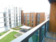 new Apartment in PULSE DEVELOPMENT...