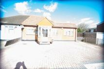 Semi-Detached Bungalow for sale in Maple Road, Hayes...