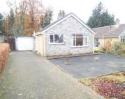Bungalow for sale in Norwood Drive...