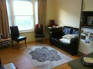 STUDENT Studio flat to rent