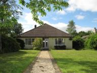 3 bed Detached Bungalow for sale in Crewkerne Road...