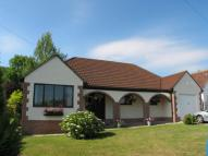 Detached Bungalow to rent in Uplyme, Lyme Road