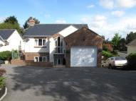 Detached house in Crewkerne Road...