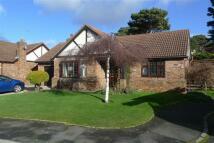 Bryn Gannock Detached Bungalow for sale