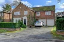 6 bed Detached home in Balmoral Close, ALTON...