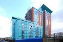 new Flat in East India Dock Road...