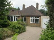 Bungalow to rent in Cannock Road, Burntwood...