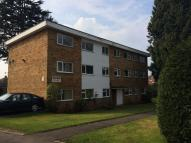 3 bed Flat to rent in Holly Bank...