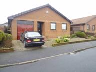 3 bedroom Detached Bungalow for sale in Montrose Close...