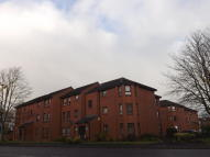 1 bedroom Flat to rent in Caird Street, Hamilton...