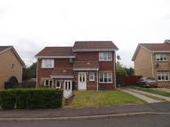2 bed semi detached house to rent in Horatius Street, ML1