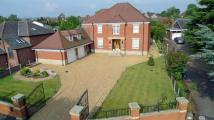 Tor Avenue Detached house for sale