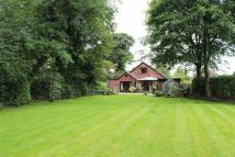 Detached Bungalow for sale in Ainsworth Hall Road...