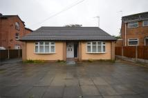 Detached Bungalow to rent in Foxdale Close, Prenton...