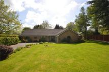 4 bed Detached Bungalow in Poulton Royd Drive...
