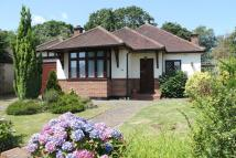 3 bed Detached Bungalow in Woodlands Drive...