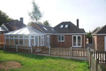 Bungalow to rent in Highfields Close...