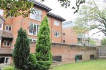 Flat to rent in WIMBLEDON HILL ROAD...