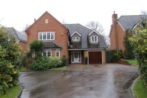 5 bed Detached home to rent in Maple Drive Lightwater