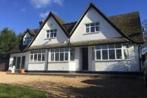 4 bedroom home in Studham