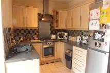 house to rent in Rose Street, Farington