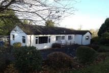 Detached Bungalow to rent in Victoria Road Brookfield