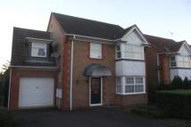 Hinchingbrooke property to rent
