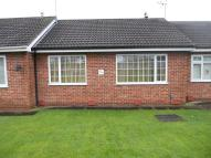 Bungalow to rent in Ashton Road, Norton...