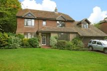 Detached property to rent in Fielden Lane...