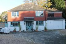Detached property to rent in Southbourne