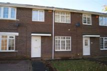3 bed Terraced home in Chester Grove, Blyth