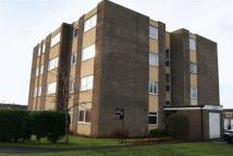 Ground Flat to rent in Astley Court...