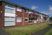 Acomb Avenue Apartment to rent
