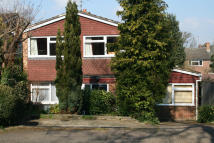 4 bed Detached property to rent in Beechwood Close...