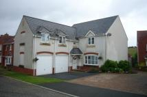 4 bedroom Detached house for sale in Dulings Meadow...