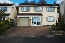 Detached home in Blenheim Close, Highweek...