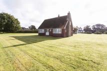 Detached house for sale in Bolton Lane, York...