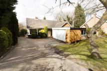 The Meadows Detached Bungalow for sale