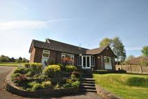 Bungalow to rent in Middlewood Road, Poynton...