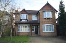 Detached house to rent in Oakleigh Road...
