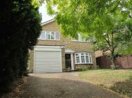 Detached home in Ravensbourne Avenue...