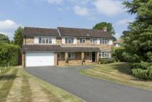 Detached property to rent in Ashcroft Park, Cobham...